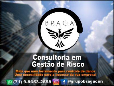 Braga Consultoria E Serviços